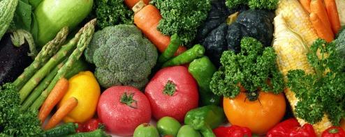 slide-vegetarism3.jpgCHAY